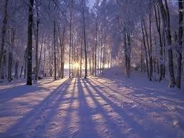 Winters Weerzien